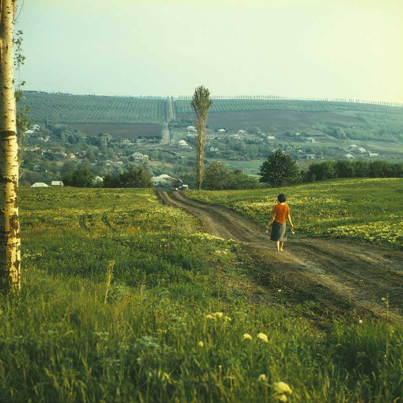 On the way to Peciste (1980).